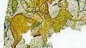 Numida_m4523e4ce_1.jpg